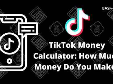 TikTok Money Calculator How Much Money Do You Make